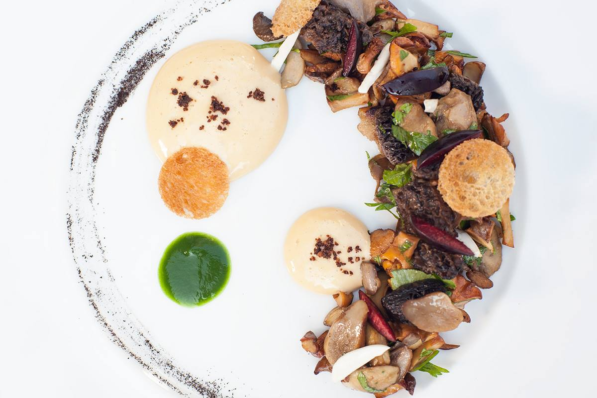 Spondi Restaurant | Wild Mushrooms